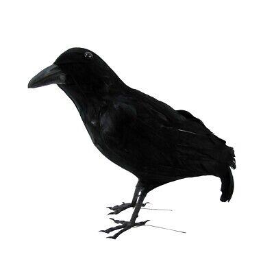 Black Lifesize Raven Movie Prop Fake Crow Halloween Accessory Bird Hunting - Fake Black Birds Halloween