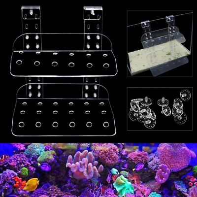 Marine Acrylic Aquarium Coral Frag Stand Rack Bracket Holder Fish Tank Plugs Set