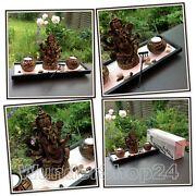 Zen Garten Buddha