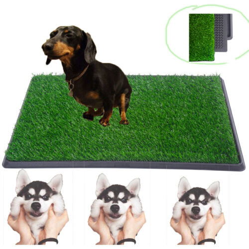 "Indoor Puppy Pet Dog Potty Training Pee Pad Mat Grass House Toilet 30""x20"""