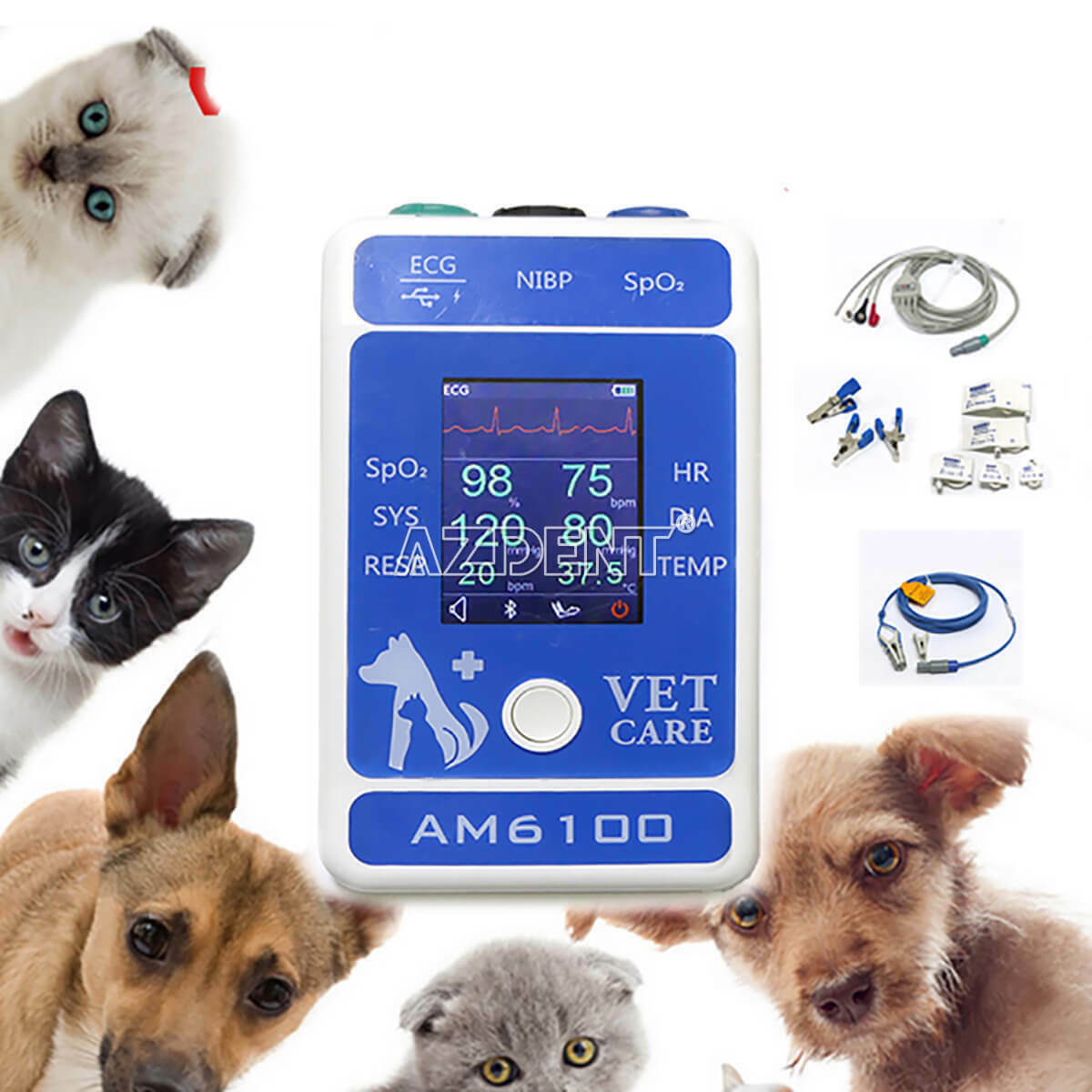 Veterinary Patient Monitor Animal Portable Monitor AM6100 Android Pet Care
