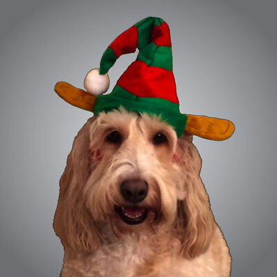 Pet Elf Hat - Christmas Day Outfit - Cute Elf Hat - Fancy Dress Up Dog Cat ()