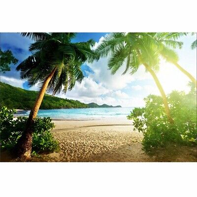 Beach Theme Background (7x5ft Seaside Beach Summer Theme Photography Vinyl Backdrop Studio)