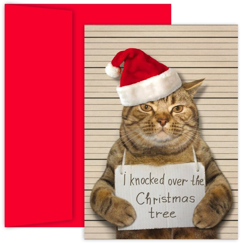 BAD CAT Holiday Collection 18 pack Boxed Christmas Cards 915900 2018