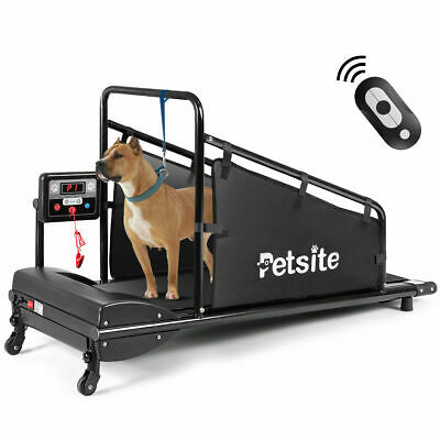 Pet Treadmill Indoor Exercise Fitness for Dogs ...