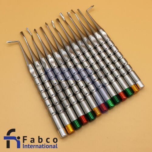 13 Pcs Luxating Dental Root Tip Extracting Elevators Instruments Surgery Inst