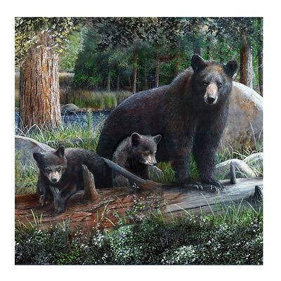 "Black Bear&Cubs 70"" Fabric Bath Shower Curtain Rustic Bathroom Home/Cabin Decor"