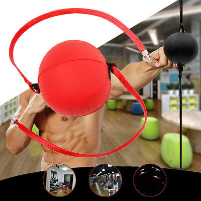 Double End Bag Punching Hanging Hook Speed Ball Training Fight Sports Focus Gym (Double End Hook)