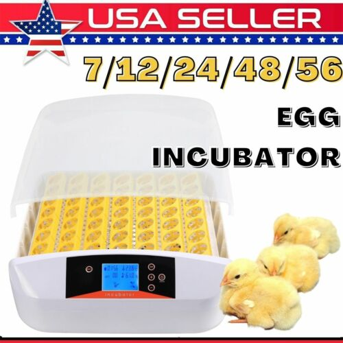 7/12/24/48/56 Automatic Eggs Turning Digital LED Display with Light 2021 New