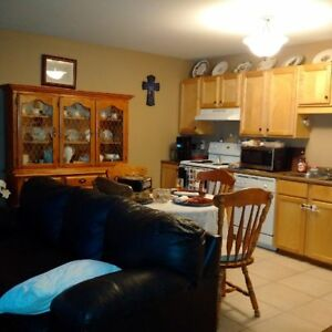 20 Woodhollow Bottom - 2BR 2 Level Townhouse East, W&D, Parking