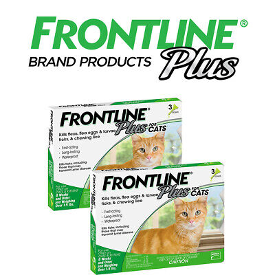 Frontline Plus 6 Month Supply For Cats Over 8-Weeks Fast Free Shipping( 6 Dose)