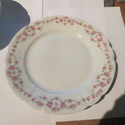 Ensemble de 17 assiettes plates ornées de roses