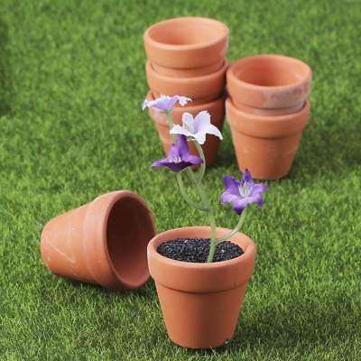 10pcs Mini Terra-cotta Planter Succulent Flower Pot Rural Home Office (Mini Terra Cotta)