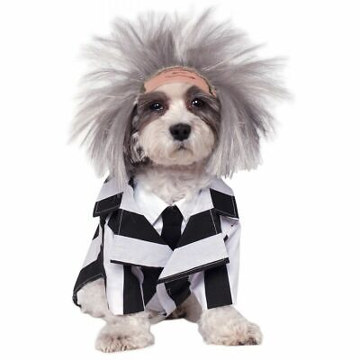NEW Beetlejuice Dog Costume Funny Pet Outfit Halloween Movie Puppy SZ SMALL