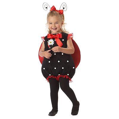 Cute Lil' Lady Bug Ladybug Infant Costume - Lady Bug Infant Costume
