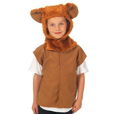 Children's Kids Boys Girls Lion Wizard of Oz Tabard Fancy Dress Up Costume](Boys Wizard Of Oz Costumes)