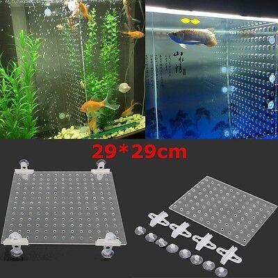 29 x 29cm Aquarium Tank Clear Acrylic Divider With Holes + 4Pcs Suction Cups