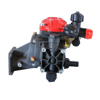 Annovi Reverberi Ar252grgi Diaphragm Pump - 34 Hollow Shaft - Ar252-gr-gci34