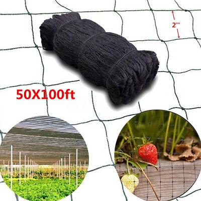 100x50 Anti Bird Net Baseball Poultry Soccer Game Fish Netting 2 Mesh Holes