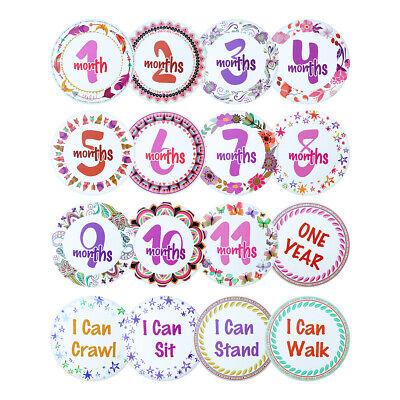 Baby Girl Milestone Monthly Belly Stickers 1st Year Keepsake Baby Shower Gift