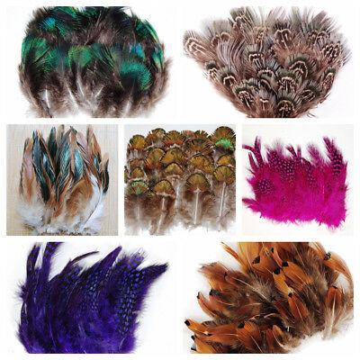 Feather PLUMAGE Assorted 2