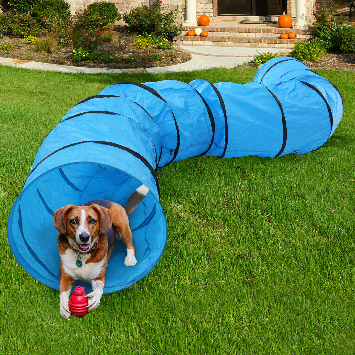 16.4'L Collapsible Pet Dog Agility Training Tunnel ...