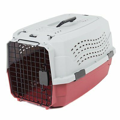Favorite Travel Kennel Vet Visit Dog Cat Portable Puppy Pet Carrier