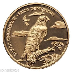 2 zl. 2008 Animals of the World: Peregrine falcon - <span itemprop='availableAtOrFrom'>Zgierz, Polska</span> - 2 zl. 2008 Animals of the World: Peregrine falcon - Zgierz, Polska