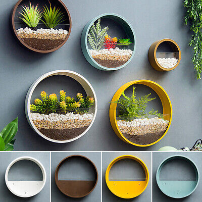 4 Sizes Wall Hanging Flower Pots Iron Acrylic Round Wall Planter Art Home Decor