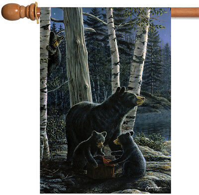 Toland Bear Picnic 28 x 40 Outdoors Nature Grizzly Birch Forest House Flag ()