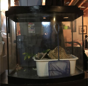 Fish Tank with Stand and many accessories