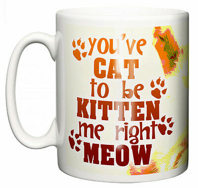 "Funny Cat Mug ""You've cat to be Kitten Me Right Meow"" Cute Cup Christmas Gift"
