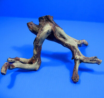 Tree Roots Aquarium Decorations for Betta Fish Tank Driftwood Cave Trunk Decor