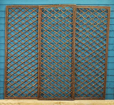 Set of 3 Willow Garden Trellis Framed Panel (120cm x 45cm) by Gardman