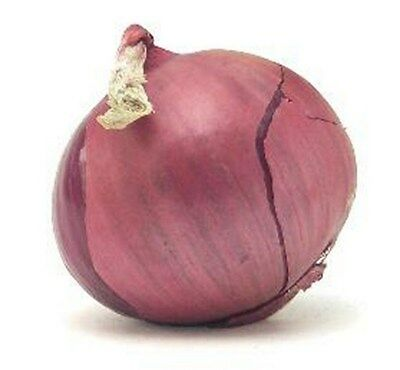 Onion- Red- Sweet- 200 Seeds -