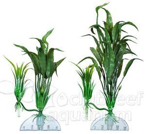 Cryptocoryne-Wendti-Plastic-Anchor-Aquarium-Plant-Decor-AquaFlora ...