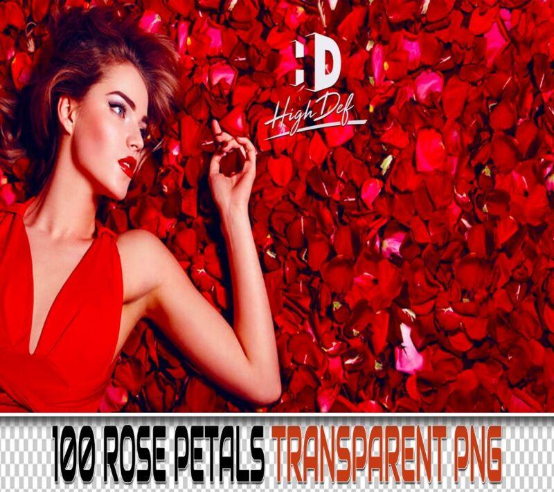 100 ROSE PETALS TRANSPARENT PNG DIGITAL PHOTOSHOP OVERLAYS BACKDROPS BACKGROUNDS