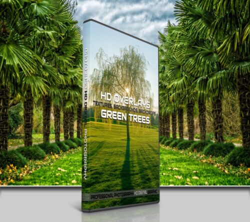 200 GREEN TREES DIGITAL PHOTOSHOP OVERLAYS BACKDROPS BACKGROUNDS PHOTOGRAPHY