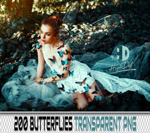 200 BUTTERFLIES TRANSPARENT PNG DIGITAL PHOTOSHOP OVERLAYS BACKDROPS BACKGROUNDS