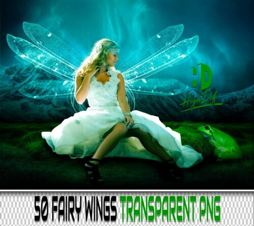 50 FAIRY WINGS TRANSPARENT PNG DIGITAL PHOTOSHOP OVERLAYS BACKDROPS BACKGROUNDS