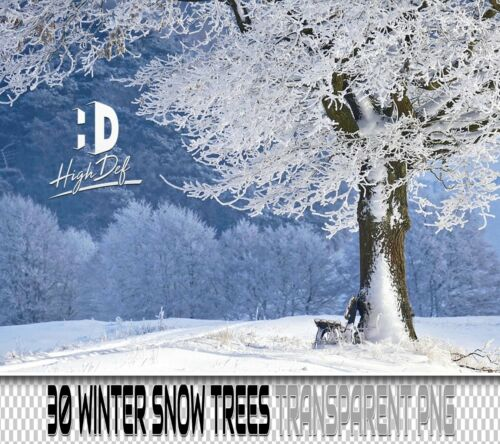 30 WINTER SNOW TREES TRANSPARENT PNG PHOTOSHOP OVERLAYS BACKDROPS BACKGROUNDS