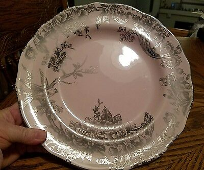 222 FIFTH ADELAIDE PINK AND SILVER DINNER PLATE! NEW