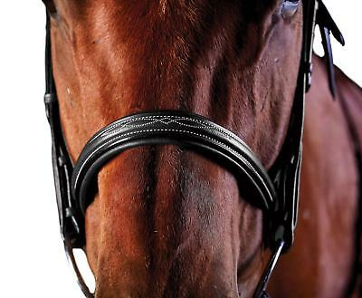 Collegiate Comfort Crown Padded Fancy Stitched Raised Cavesson (Raised Cavesson Bridle)