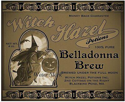 Halloween Witch Potions (HALLOWEEN WITCH POTIONS*CONCOCTIONS*BREWS*JAR BOTTLE CAN LABEL*8X10 FABRIC)