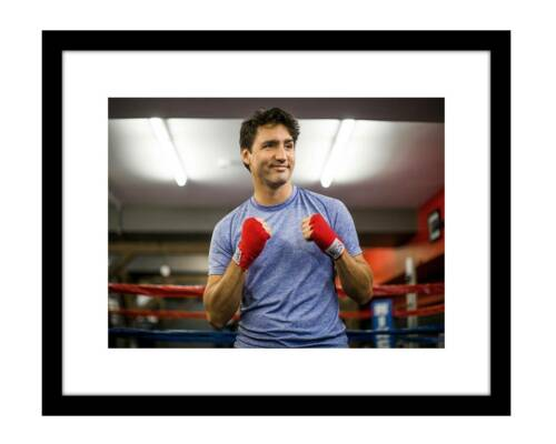 Justin Trudeau 8x10 Photo in Boxing pose Canadian Prime Minister Canada