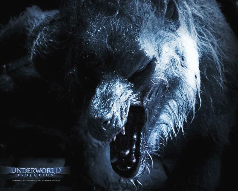 Underworld Evolution 8x10 Promo Lycan Elder Awsome!!