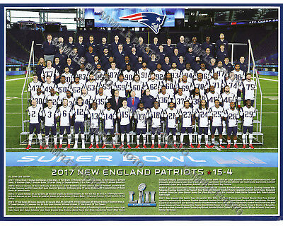 2017 NEW ENGLAND PATRIOTS SUPER BOWL 52 LII 8X10 TEAM PHOTO PICTURE