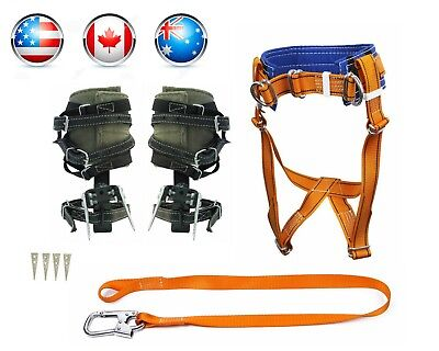 Tree Climbing Spike Set Spurs Safety Belt Safety Lanyard Carabiner Avia Shipping