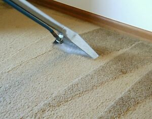 CARPET STEAM CLEANING AND HOUSE CLEANING $49