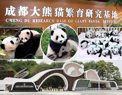 China - CHENGDU Research Base for Giant PANDA Breeding - Flexible Fridge Magnet